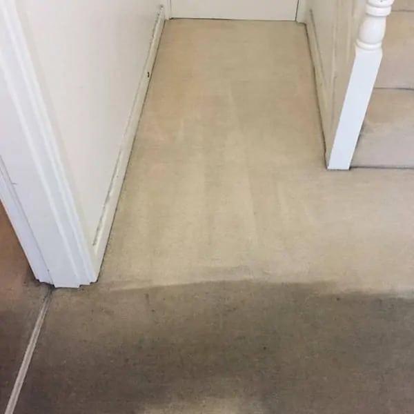 Carpet Cleaner Breadsall