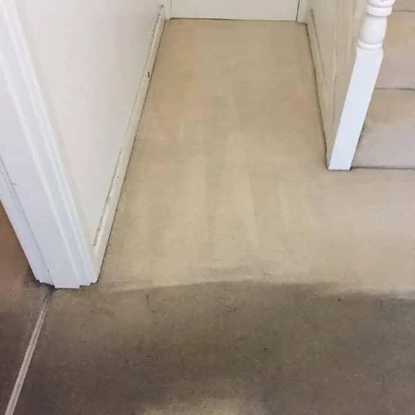 Carpet Cleaner Quarndon